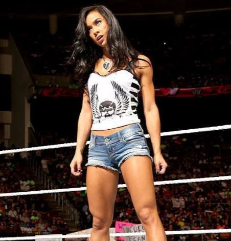 Was and AJ LEE AND PAIGE NAKID congratulate