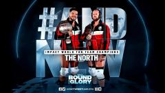 New IMPACT Tag Team Champions Crowned At IMPACT Wrestling Bound for Glory 2020