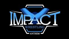 Anthem Wrestling Received PPP Loan From The Government