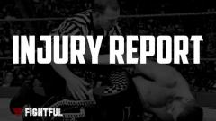 WWE, AEW, Impact, NJPW, ROH Injury Report List: Expected Returns, Inactive | Fightful Wrestler Injury List