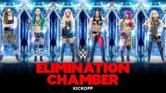 Report: WWE Elimination Chamber Slated For February 21