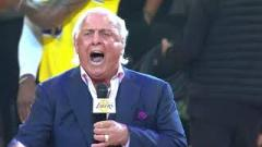 Ric Flair Hypes Up The Los Angeles Lakers, Tom Castor Cleared To Return | Fight-Size Update