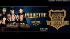 Billy Gunn Says He Wouldn't Accept A DX WWE Hall Of Fame Induction Without Chyna