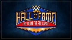WWE Senior Director Of Talent Relations Sue Aitchison Receiving Warrior Award At Hall Of Fame Ceremony