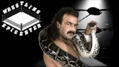 Jake Roberts Doesn't Consider WWE DVD His Autobiography