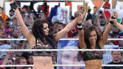 AJ Lee Had Three Herniated Discs In Spine Before SummerSlam 2014, Thanks Paige For Protecting Her