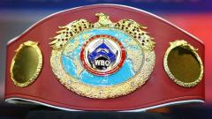 WBO Orders Two Title Eliminators, Winners To Fight For Vacant Light Heavyweight World Title