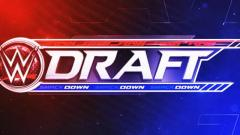 2019 WWE Draft Report Card