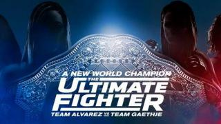 UFC Ultimate Fighter 26 Finale Results: The First Ever UFC Women's Flyweight Champion Is Crowned