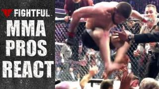 MMA Pros React To Khabib Nurmagomedov Brawl After UFC 229