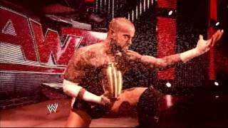 CM Punk and the Undertaker's 2013 Rivalry Retrospective