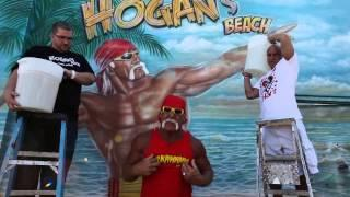 Hulk Hogan Knew He Had To Retire After Six Back Surgeries