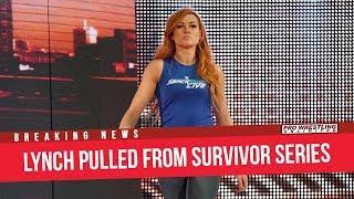 Fight Size Update: Zelina Vega Cleared, John Cena Vodka Commercial, Batista Remembers Stan Lee, More