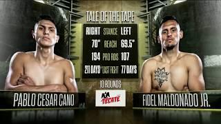 Full Fight: Pablo Cesar Cano vs Fidel Maldonado Jr