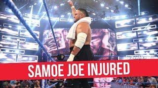 Fight Size Update: WWE Evolution Streaming On Twitter, Sasha Banks On The Real, CM Punk Birthday, More