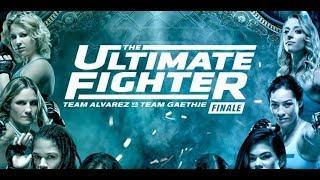 The Ultimate Fighter: An Enigma For Consumption