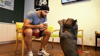 Report: Andrei Arlovski Faces Shamil Abdurakhimov At UFC Fight Night Moscow