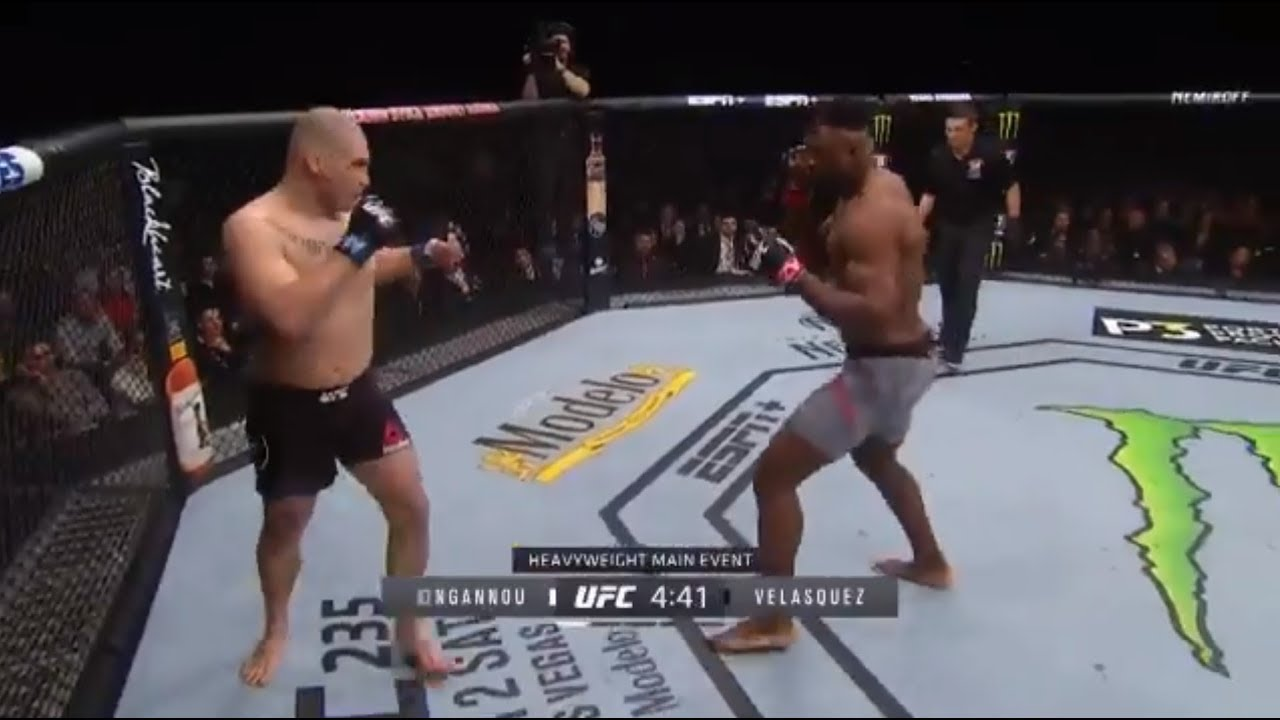 Ufc Fighters Fighting